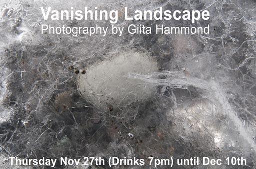 Vanishing Landscapes by Giita Hammond